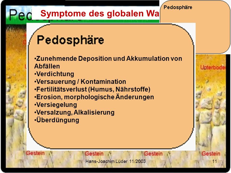 Symptome des globalen Wandels