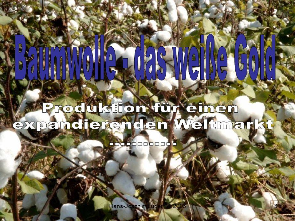 Baumwolle - das weiße Gold