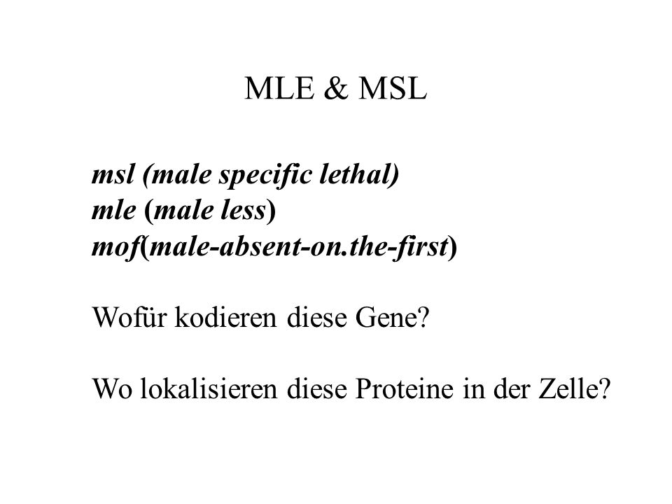 MLE & MSL msl (male specific lethal) mle (male less)