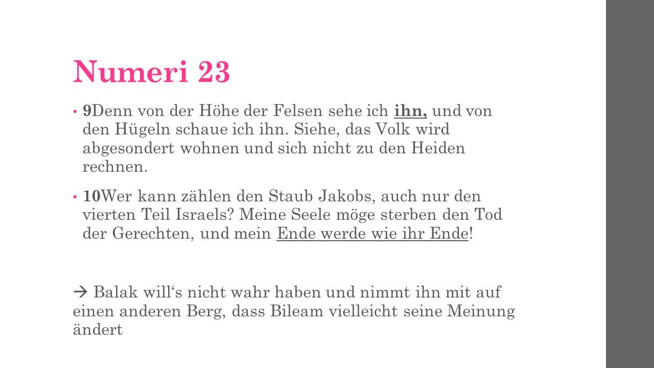 Numeri 23