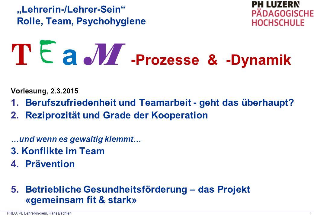"""""""Lehrerin-/Lehrer-Sein Rolle, Team, Psychohygiene"""