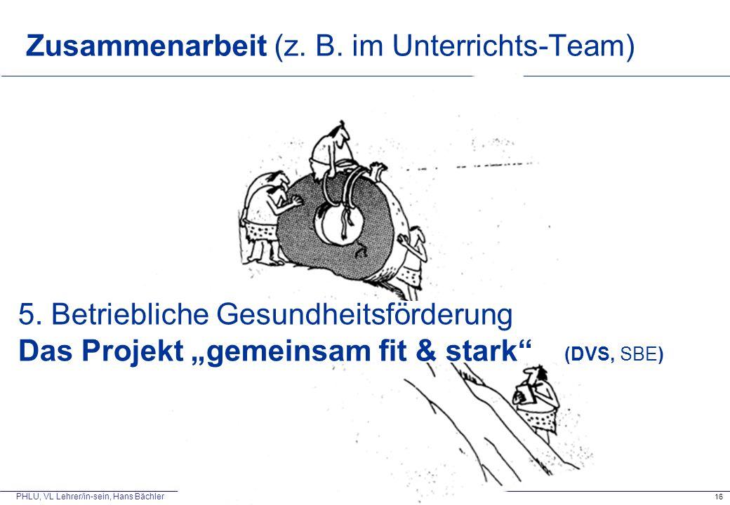Zusammenarbeit (z. B. im Unterrichts-Team)