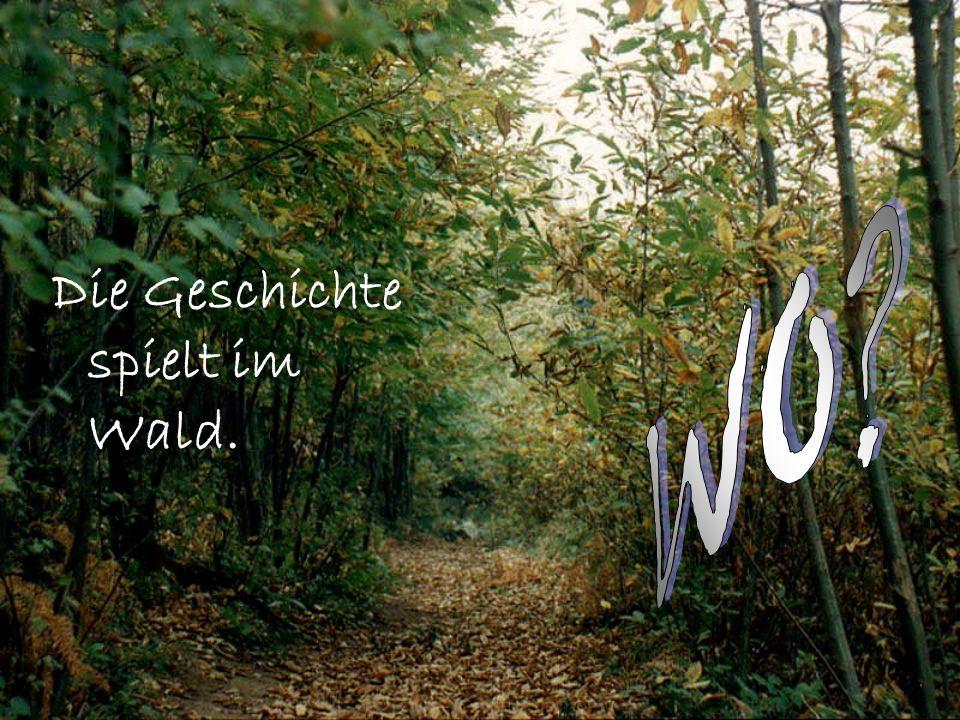WO Die Geschichte spielt im Wald.