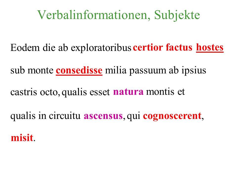 Verbalinformationen, Subjekte