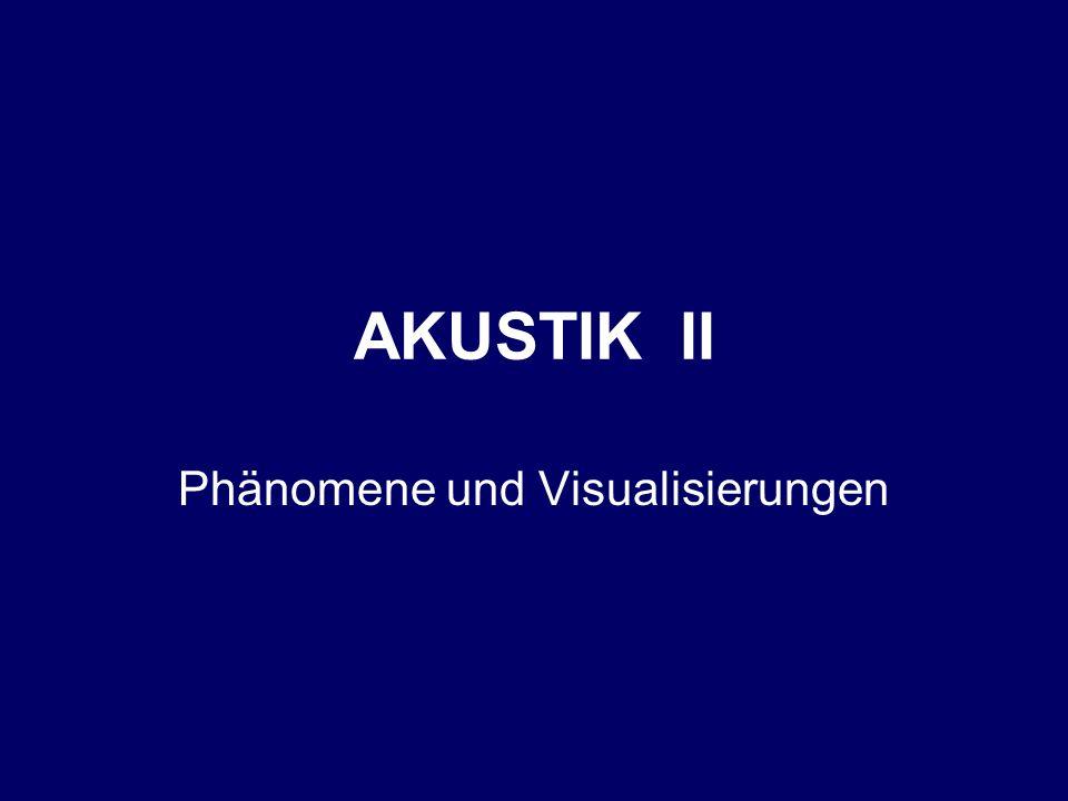 Phänomene und Visualisierungen