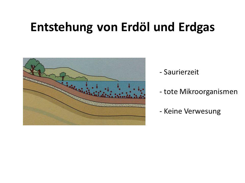 Entstehung von Erdöl und Erdgas
