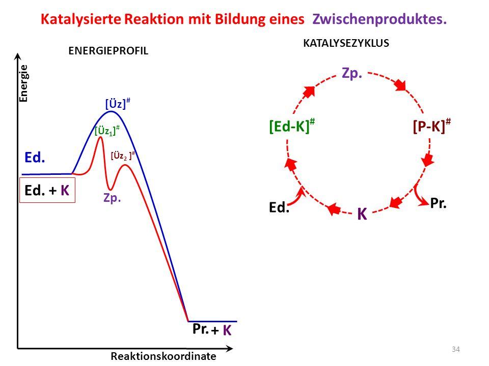 K Katalysierte Reaktion mit Bildung eines Zwischenproduktes. Ed.