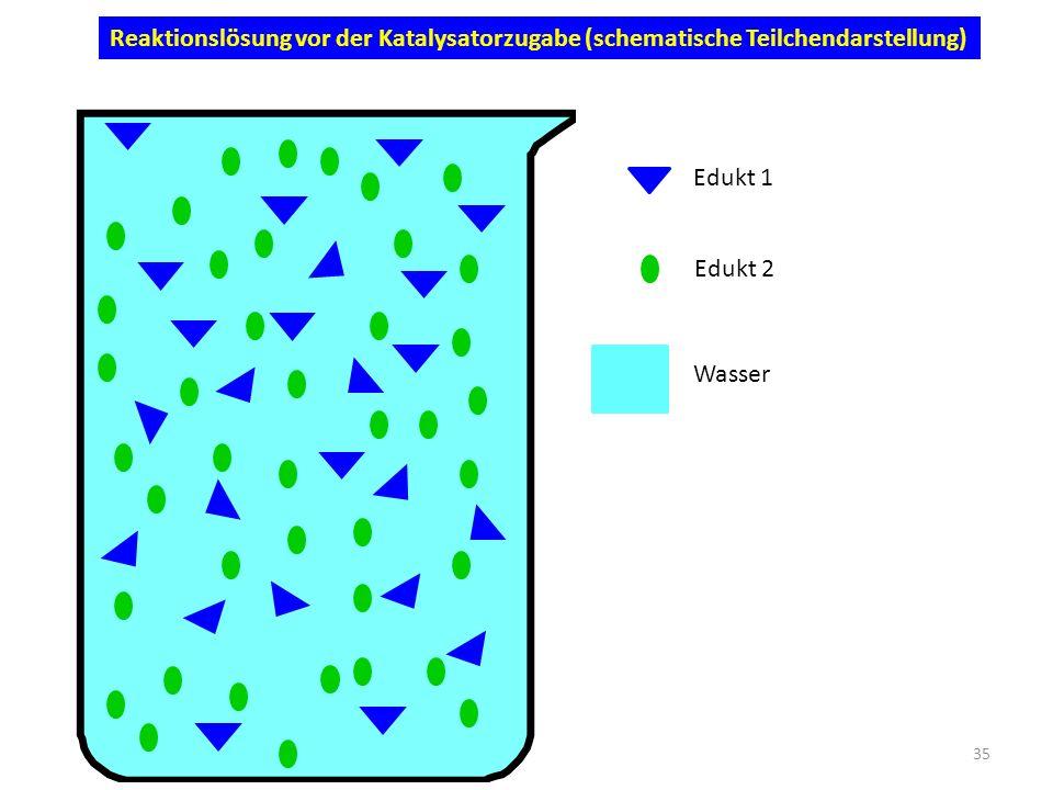 Reaktionslösung vor der Katalysatorzugabe (schematische Teilchendarstellung)