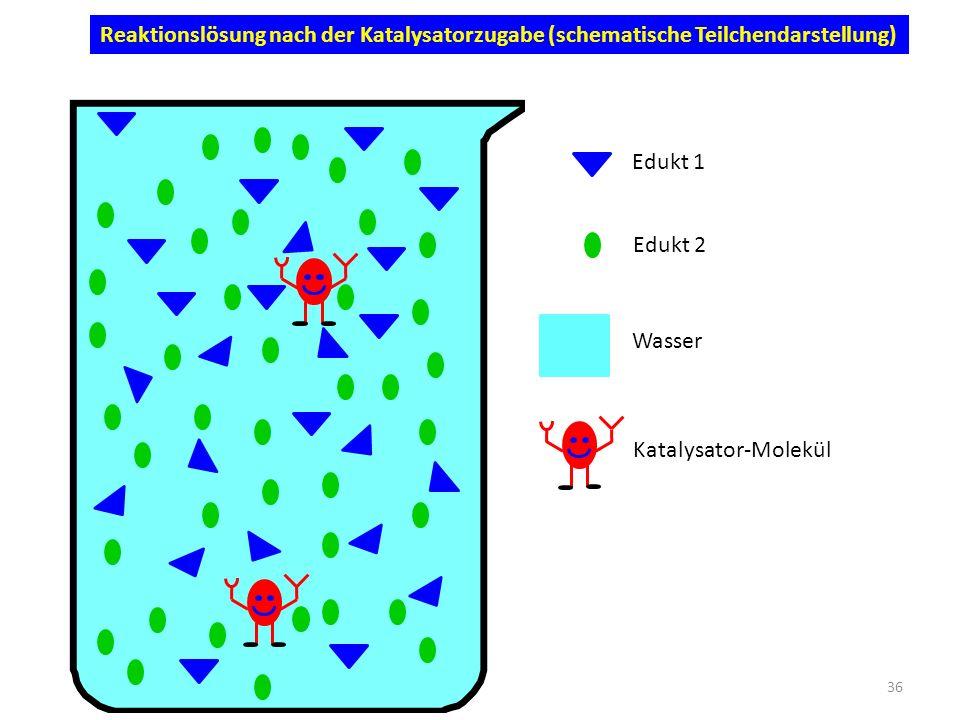 Reaktionslösung nach der Katalysatorzugabe (schematische Teilchendarstellung)