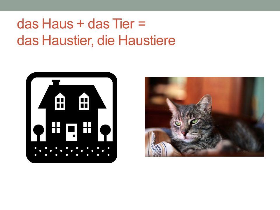 das Haus + das Tier = das Haustier, die Haustiere