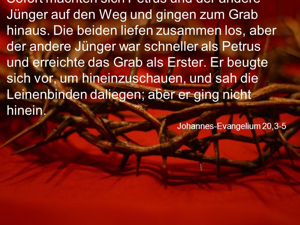 Johannes-Evangelium 20,3-5