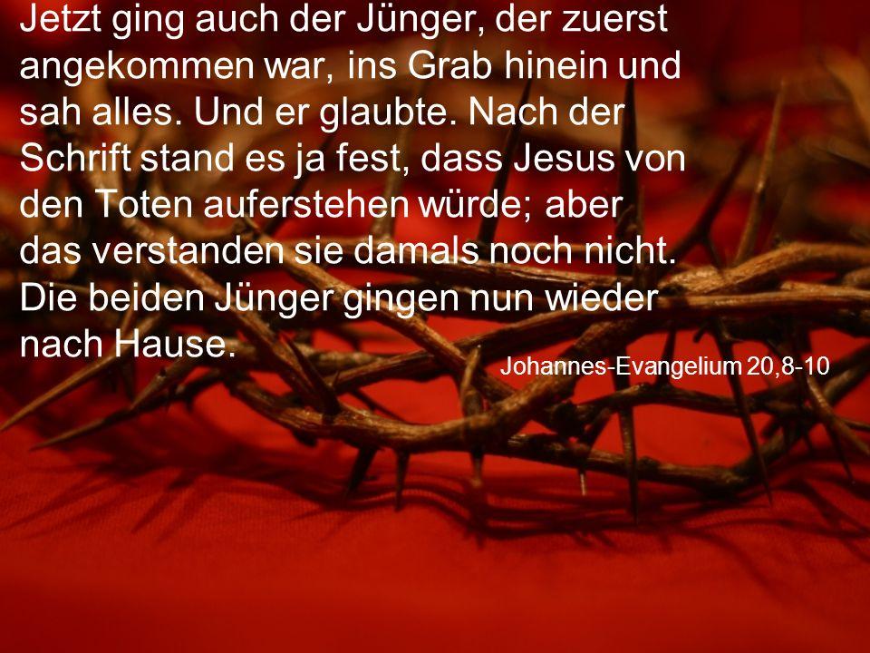 Johannes-Evangelium 20,8-10