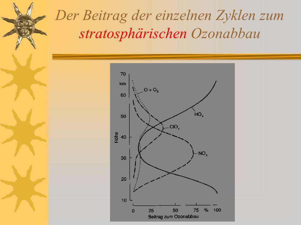 Der Beitrag der einzelnen Zyklen zum stratosphärischen Ozonabbau