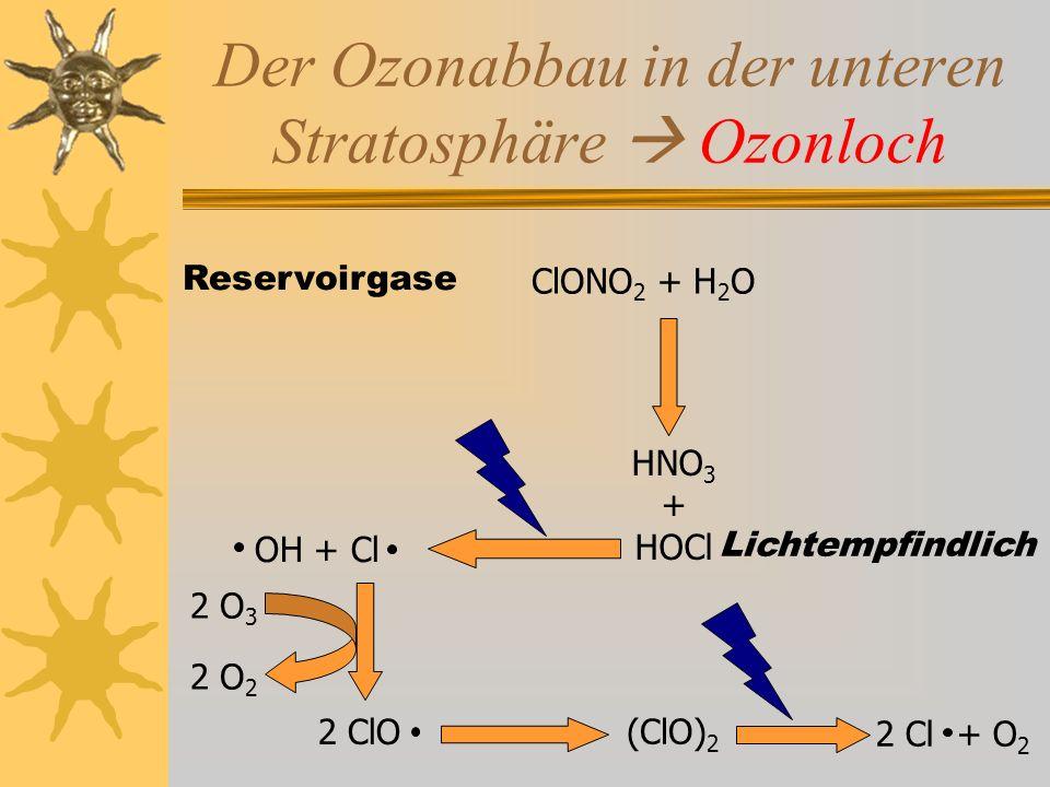 Der Ozonabbau in der unteren Stratosphäre  Ozonloch