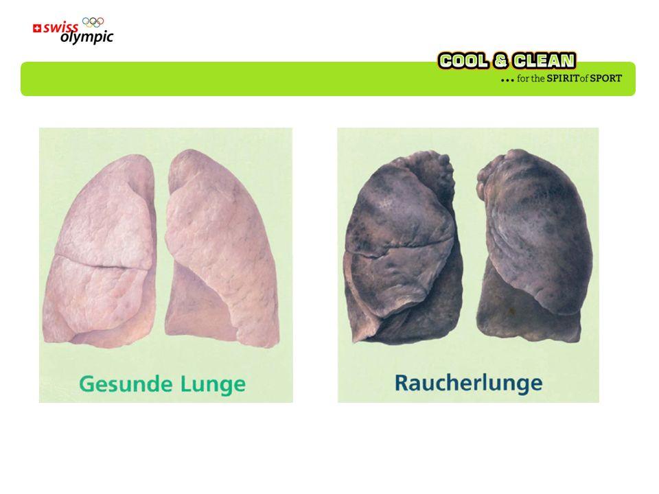 Poumons sains Poumons de fumeur