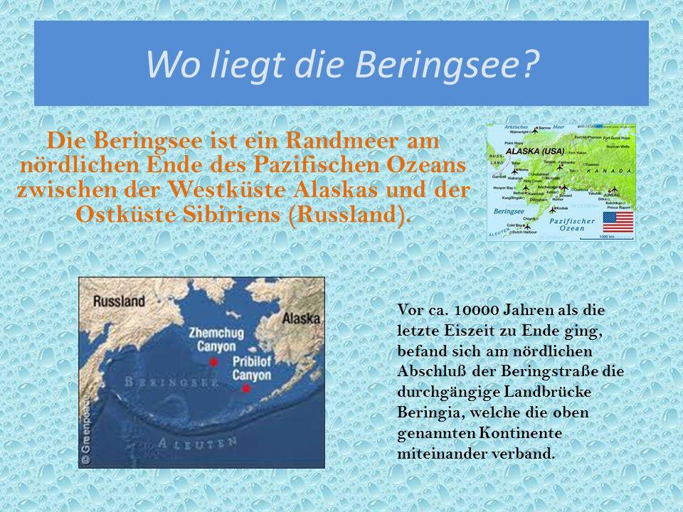 Wo liegt die Beringsee