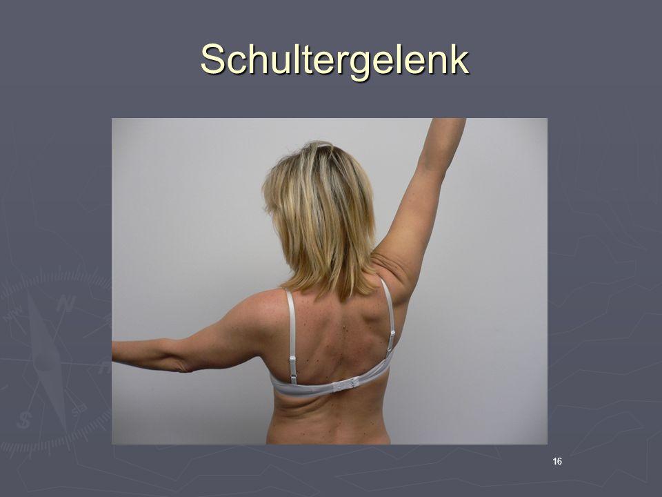 Schultergelenk 16