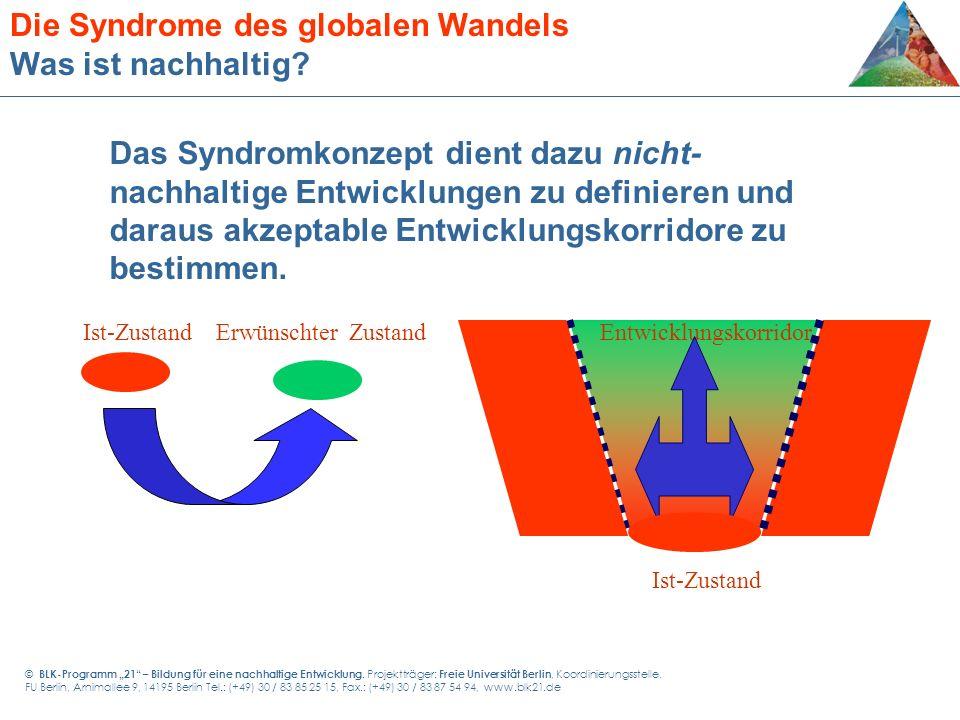 Die Syndrome des globalen Wandels Was ist nachhaltig