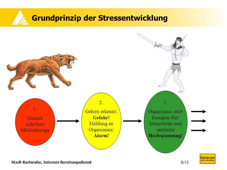 Grundprinzip der Stressentwicklung