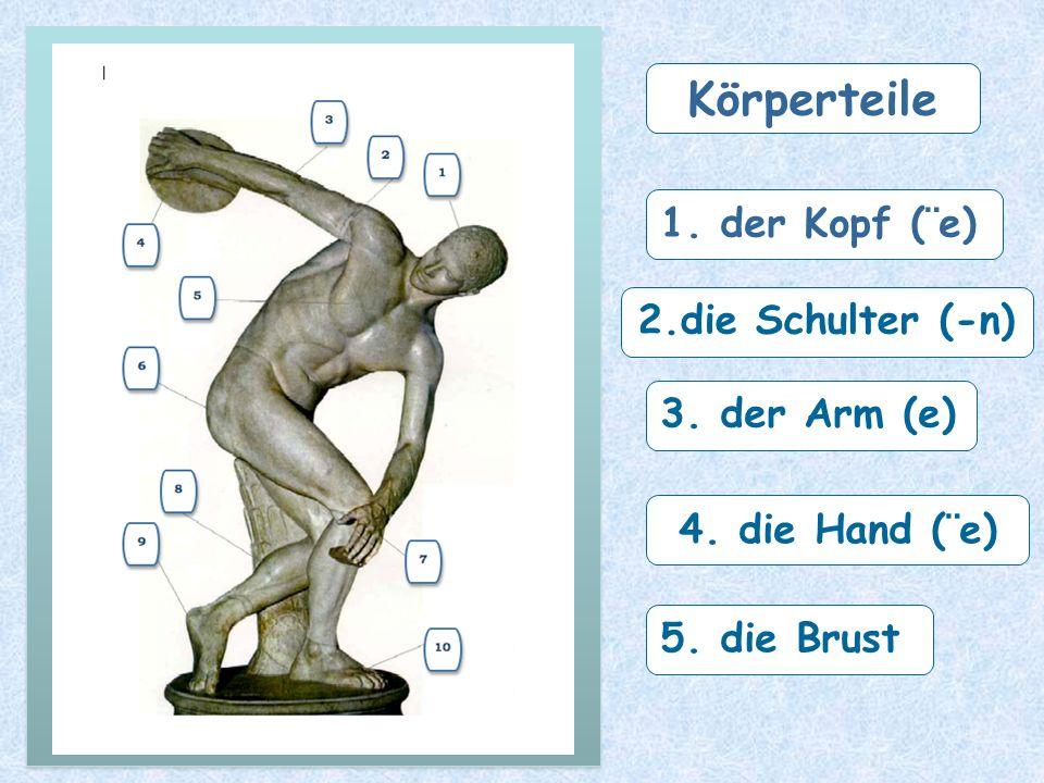 Körperteile 1. der Kopf (¨e) 2.die Schulter (-n) 3. der Arm (e)