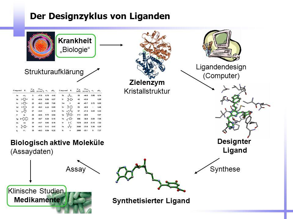 Der Designzyklus von Liganden
