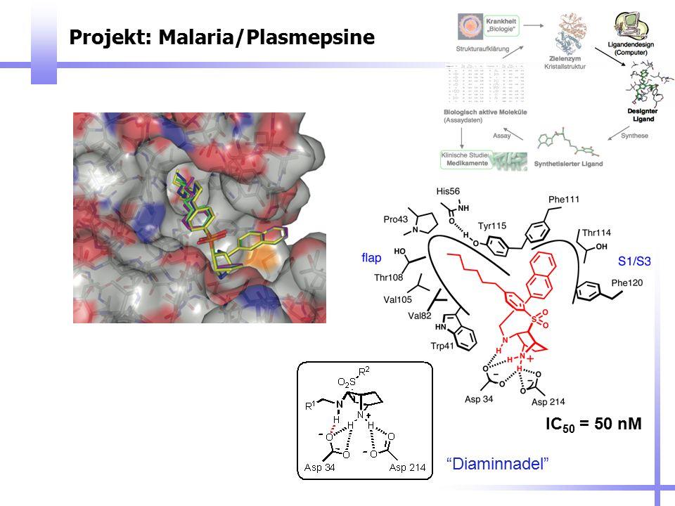 Projekt: Malaria/Plasmepsine