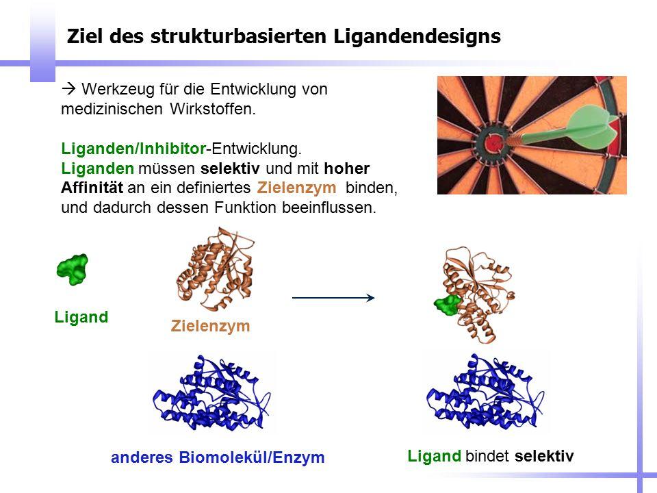 Ziel des strukturbasierten Ligandendesigns