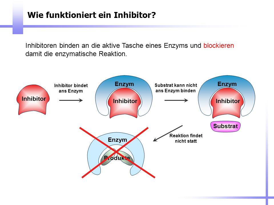 Wie funktioniert ein Inhibitor