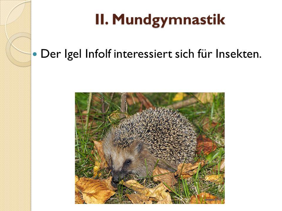 II. Mundgymnastik Der Igel Infolf interessiert sich für Insekten.