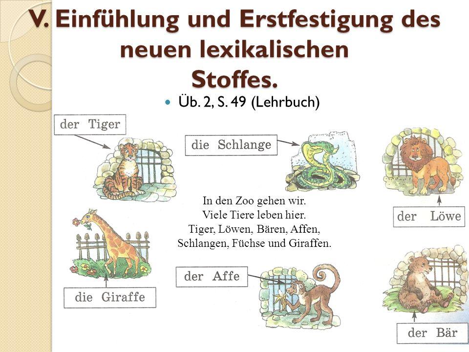 V. Einfühlung und Erstfestigung des neuen lexikalischen Stoffes.