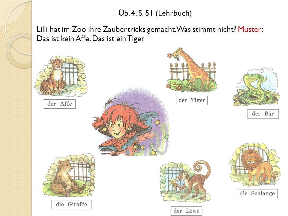 Üb. 4, S. 51 (Lehrbuch) Lilli hat im Zoo ihre Zaubertricks gemacht.