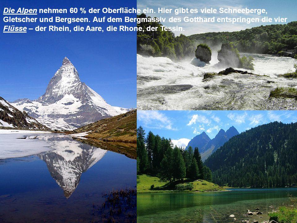 Die Alpen nehmen 60 % der Oberfläche ein