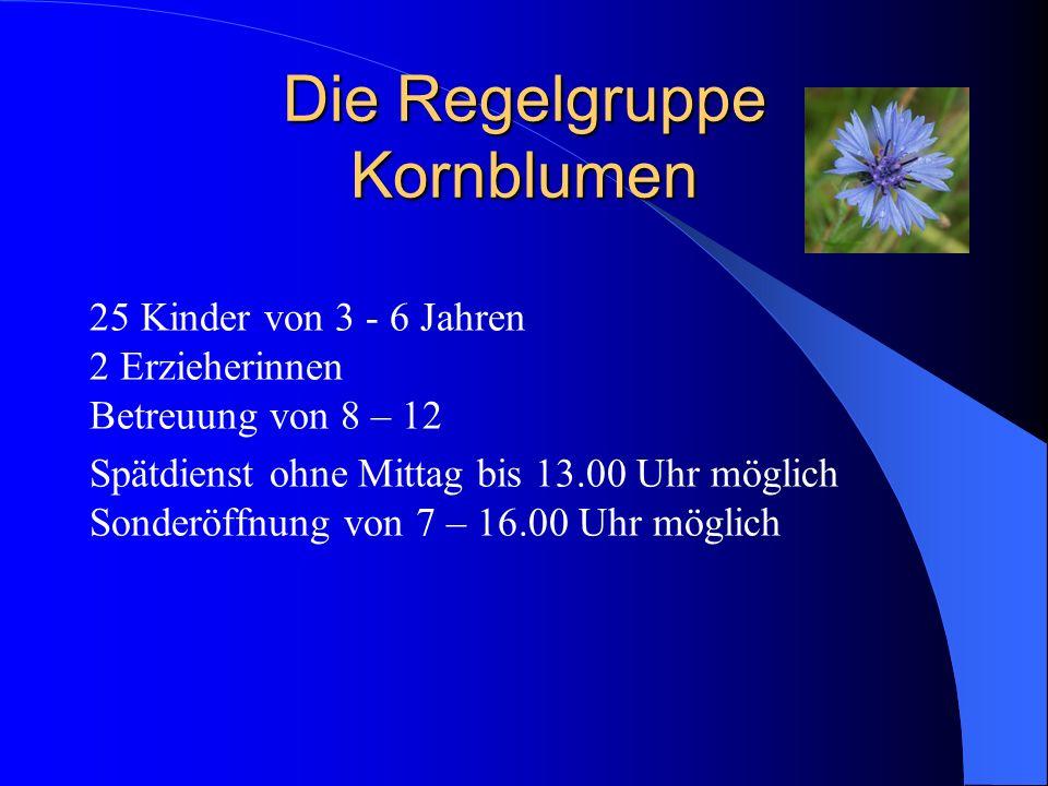Die Regelgruppe Kornblumen