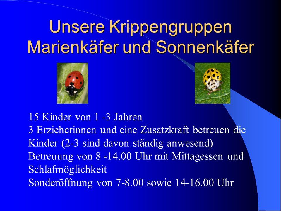 Unsere Krippengruppen Marienkäfer und Sonnenkäfer