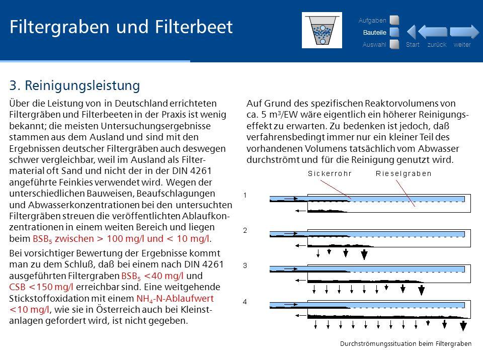 Filtergraben und Filterbeet