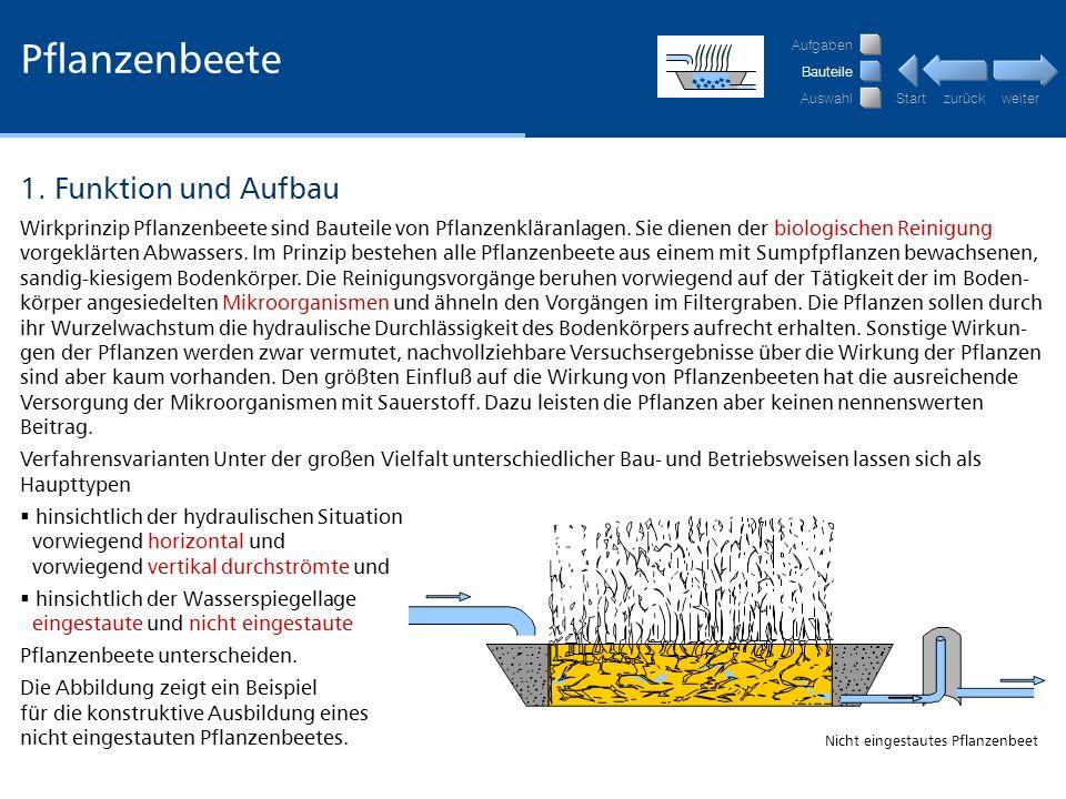 Pflanzenbeete 1. Funktion und Aufbau