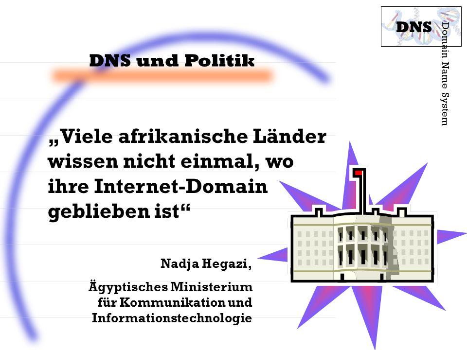 """DNS DNS und Politik. Domain Name System. """"Viele afrikanische Länder wissen nicht einmal, wo ihre Internet-Domain geblieben ist"""