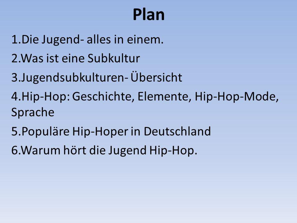 Plan 1.Die Jugend- alles in einem. 2.Was ist eine Subkultur