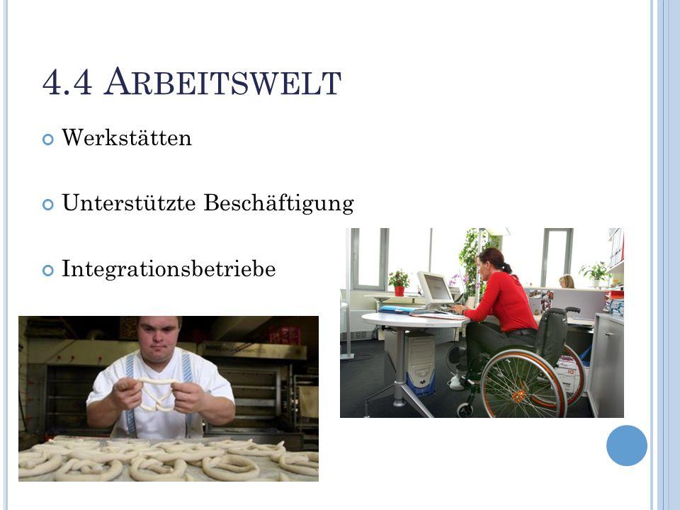 4.4 Arbeitswelt Werkstätten Unterstützte Beschäftigung