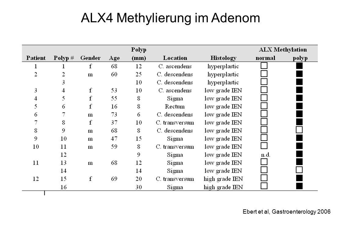 ALX4 Methylierung im Adenom