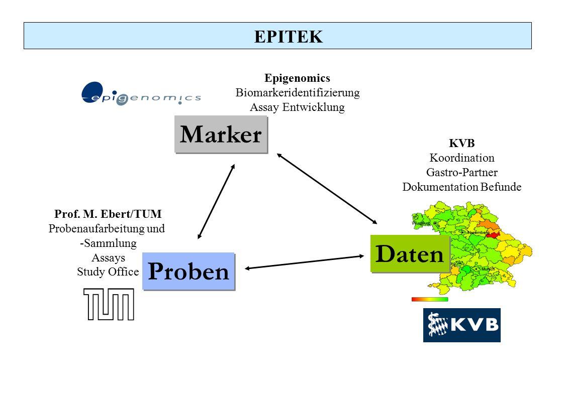 Marker Daten Proben EPITEK Epigenomics Biomarkeridentifizierung