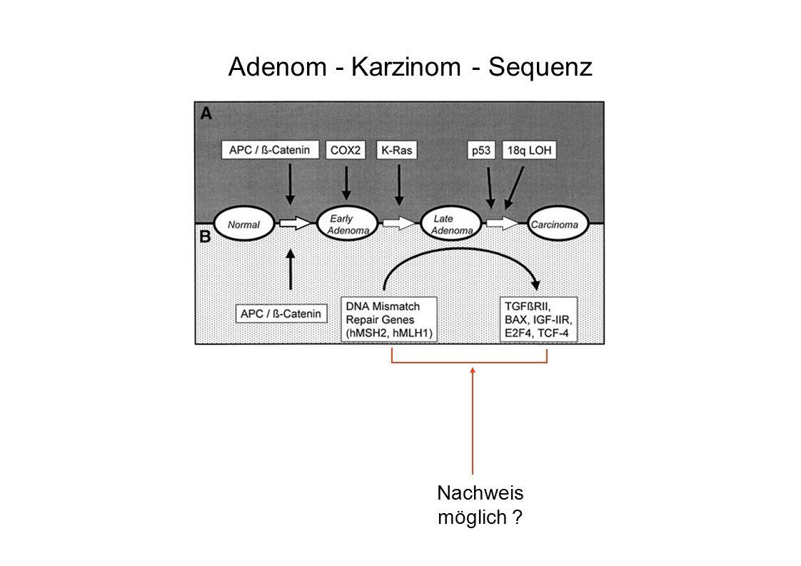 Adenom - Karzinom - Sequenz