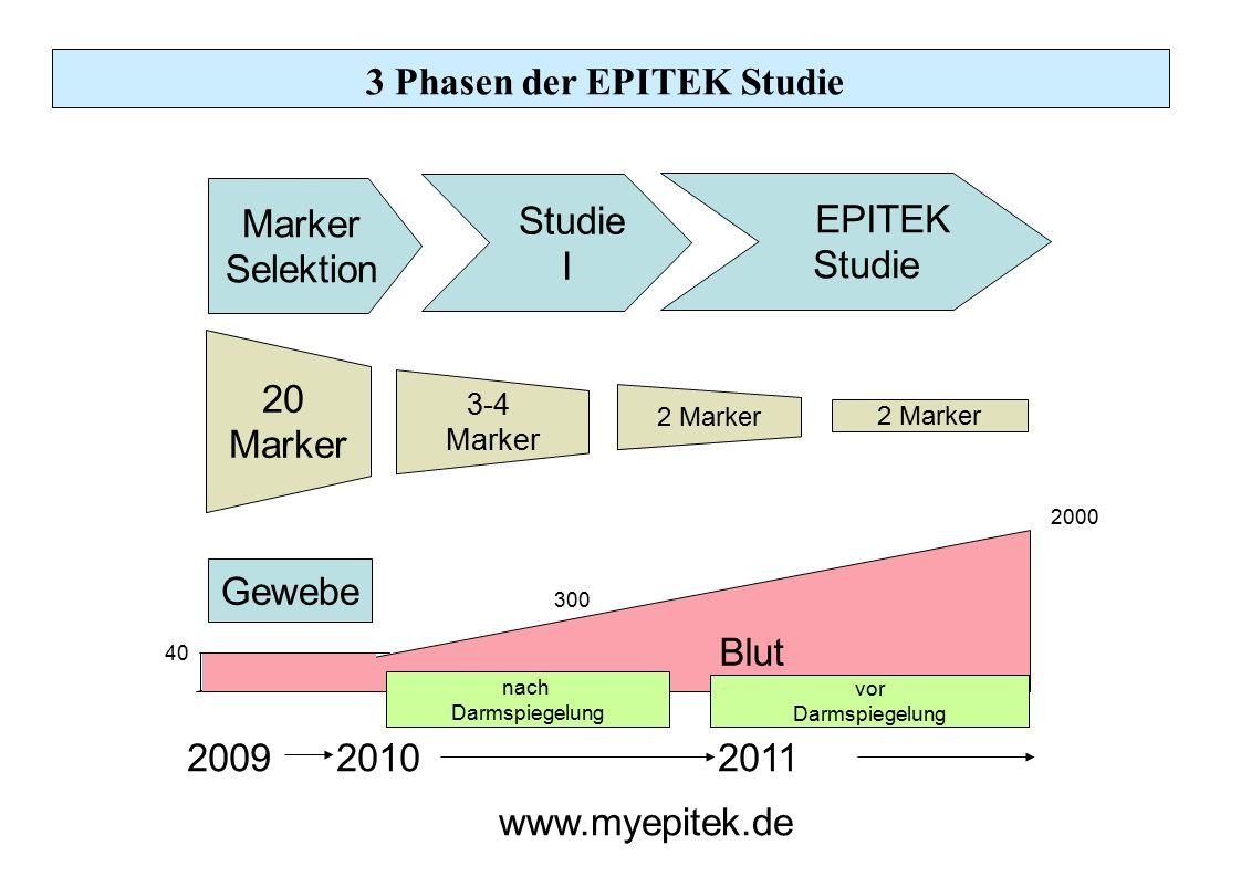 3 Phasen der EPITEK Studie