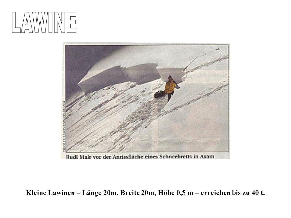 LAWINE Kleine Lawinen – Länge 20m, Breite 20m, Höhe 0,5 m – erreichen bis zu 40 t.