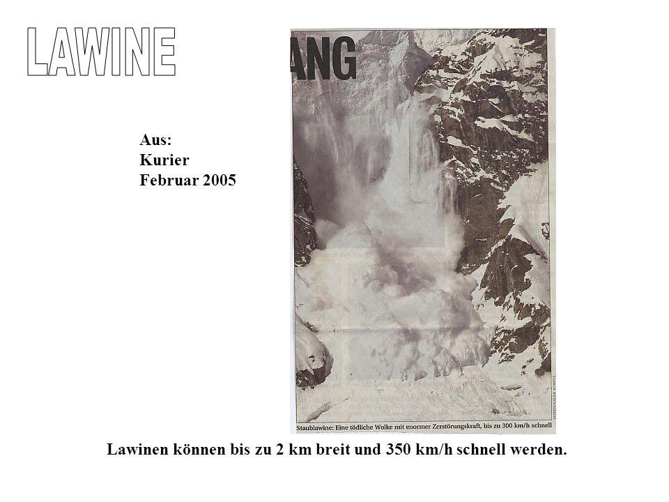 LAWINE Aus: Kurier Februar 2005