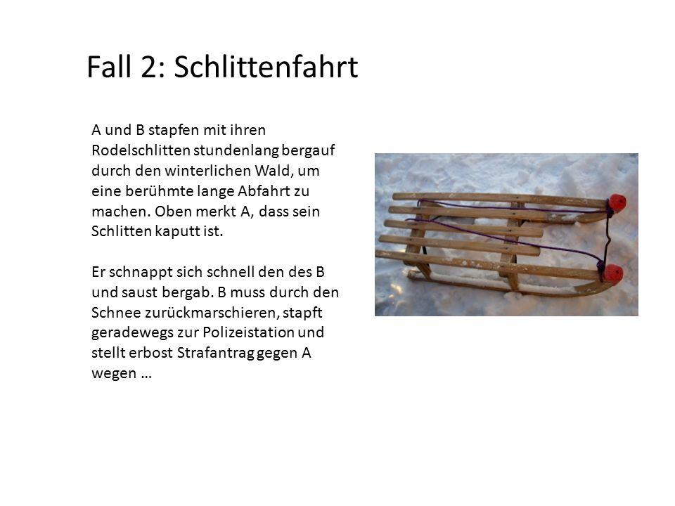 Fall 2: Schlittenfahrt