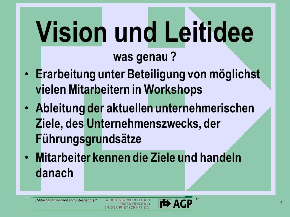 Vision und Leitidee was genau