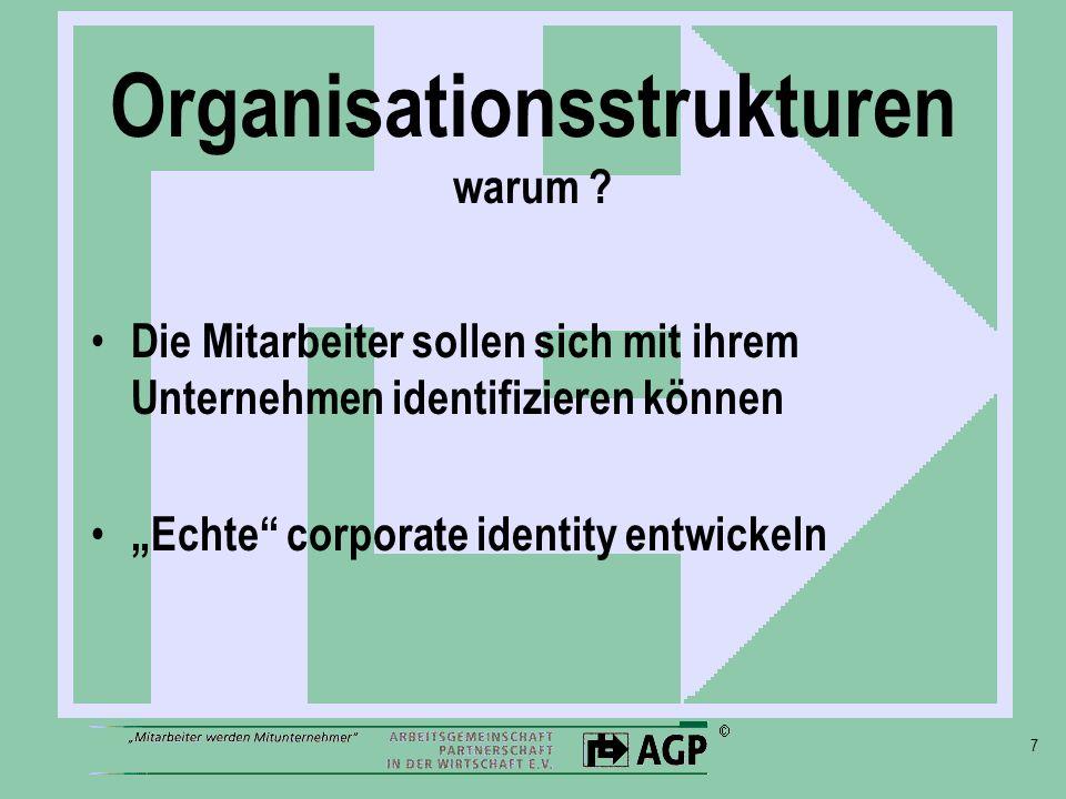 Organisationsstrukturen warum