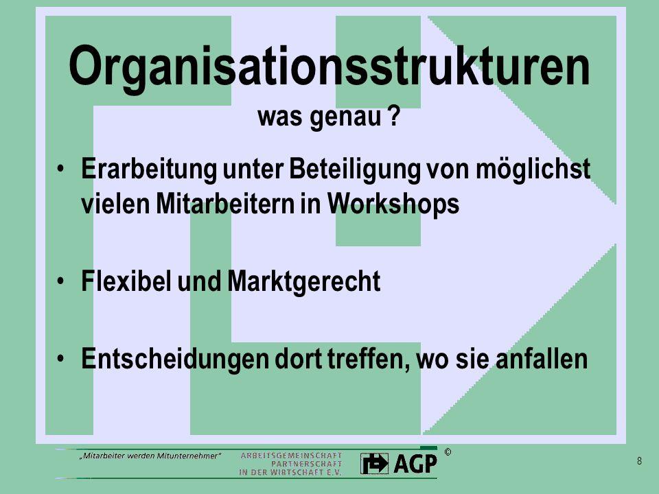 Organisationsstrukturen was genau