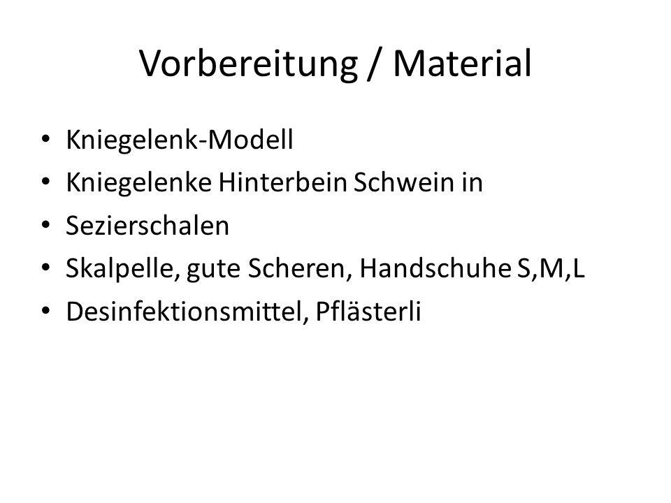 Vorbereitung / Material